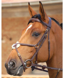 Dyon Collection Bridle with Grackle Noseband Brown