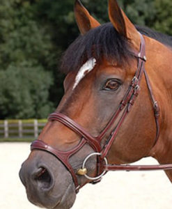 Dy'on Double Noseband Bridle