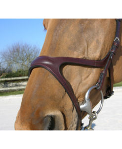 Dy'on X Fit Anatomic Bridle Noseband