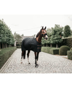 Kentucky Horsewear Stable Rug Black 2