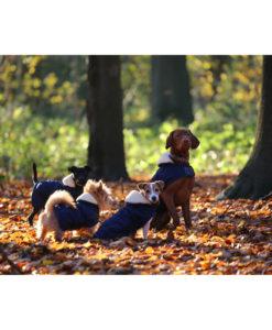 Kentucky Dogwear Dog Coats