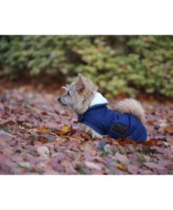 Kentucky Horsewear Dog Coats 3