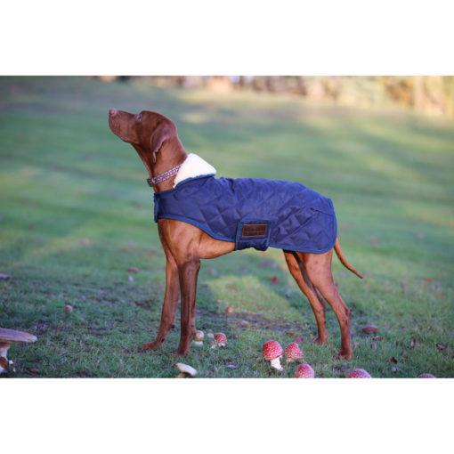Kentucky Horsewear Dog Coats 5