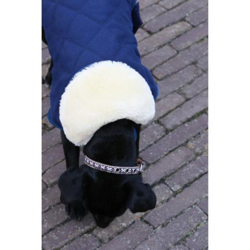 Kentucky Horsewear Dog Coats 7