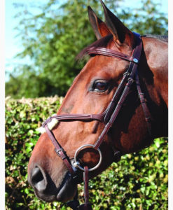 Dy'on New English Collection Grackle Noseband