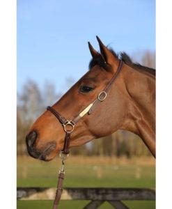Kentucky Horsewear Grooming Head Collar
