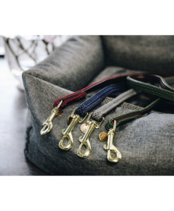 Kentucky Dogwear Dog Leads
