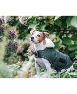 Kentucky Dogwear Waterproof Dog Coat