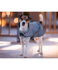 Kentucky Dogwear Reflective Dog Coat 6