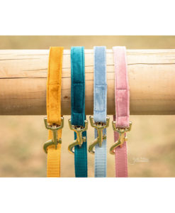 Kentucky Dogwear Velvet Dog Leads