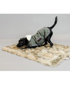 kentucky-dogwear-fuzzy-blanket-2