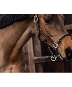 Kentucky Horsewear Rope Halter