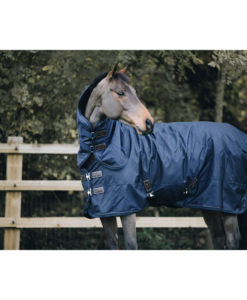 All Weather Light Weight Turnout Rug