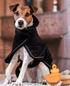 Kentucky Dogwear Dog Towel